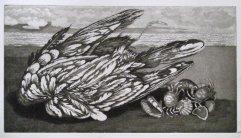 247-F Radierung Toter Vogel 16x29,5cm